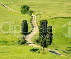 Toskana Huegel  - Tuscany hills 21a