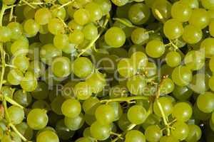 Weintrauben, weiß