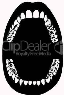Zähne eines Erwachsenen