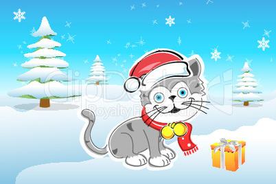 Katze mit dem Geschenk
