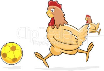Huhn spielt Fußball