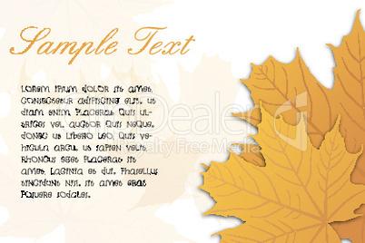 Blätter und Text