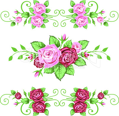Collection of roses banner