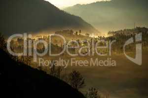 Nebel und Sonnenaufgang über dem Wald