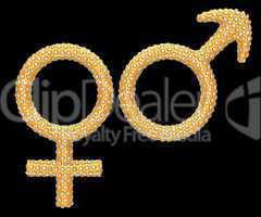 Golden gender symbols inlaid with diamonds