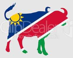 Namibia Büffel