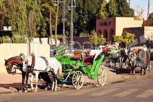 Pferdekutschen in Marrakesch 475