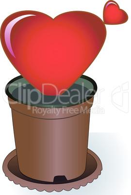 Heart in a flowerpot