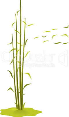 The illustration a wind breaks bamboo leaves