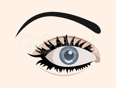 clous up eye isolated