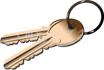 Realistic illustration the golden keys