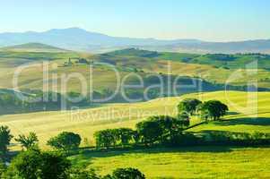 Toskana Huegel  - Tuscany hills 40