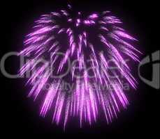 Lilac festive fireworks at night