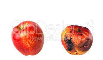 Rotten and fresh apples isolated on white