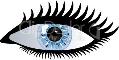 Auge Pupille blau