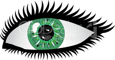 Auge Pupille grün