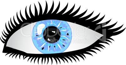 Auge Pupille hellblau