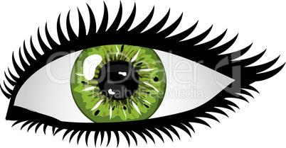 Auge Pupille hellgrün
