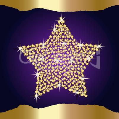 weihnachtsstern gold