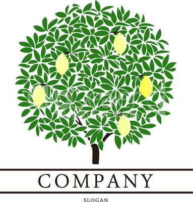 Lemon Tree Logo.eps