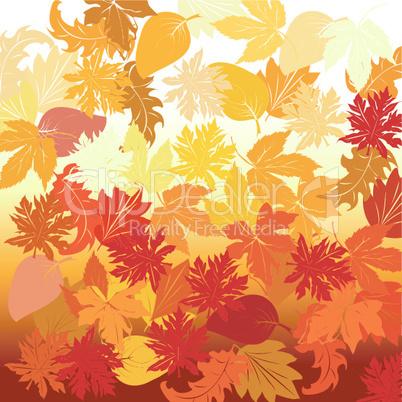 Autumn background.eps