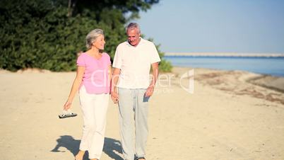Portrait of Contented Senior Couple