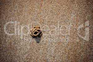 Rock worm