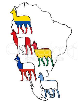Lama Südamerika