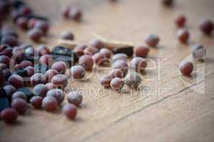 Senfsaat - Mustard Seed