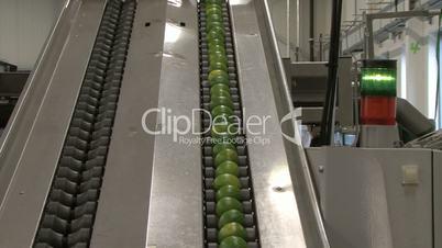Lime transported on conveyer belt