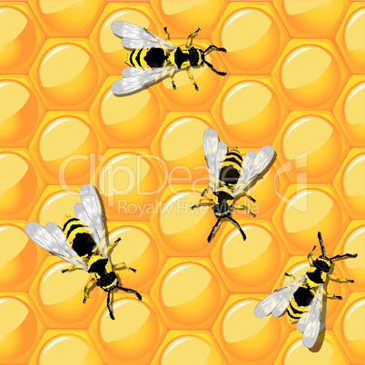 Bees and honeycomb.eps