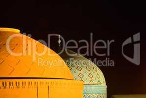 Domes of mosque in the night, Yazd, Iran