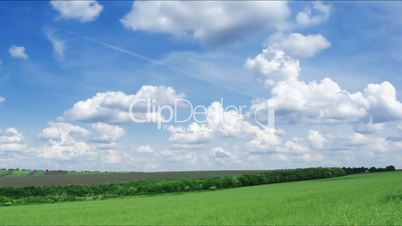 spring field. Time lapse HD