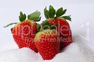 Erdbeeren   Strawberry