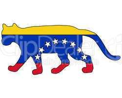 Puma Venezuela