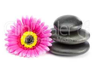 Pink and yellow flower and piled up pebbles