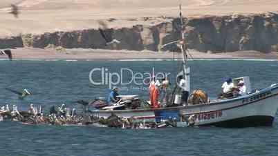 Pelikane und Fischerboot