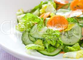 frischer Salat mit Gurke / fresh salad with cucumber