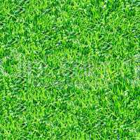 Green grass seamless pattern.