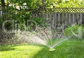 Lawn sprinkler watering grass