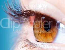 Human eyelashes close up.