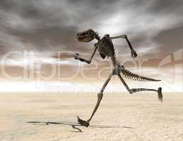 Skelett 081126