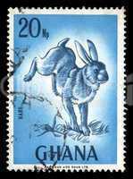 rabbit vintage postage stamp