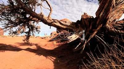 Sandstone Cliffs in Monument Valley