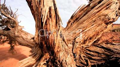 The Arid Dry Desert of Monument Valley USA