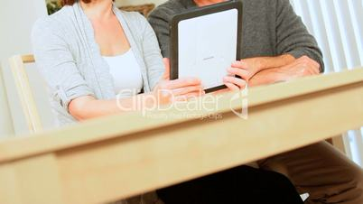 Caucasian Couple Success in Financial Planning