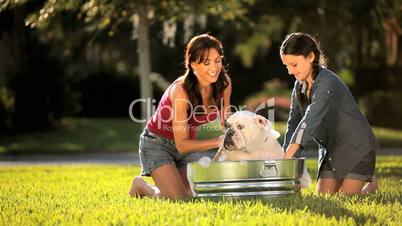 Mom & Daughter Bathing Family Bulldog