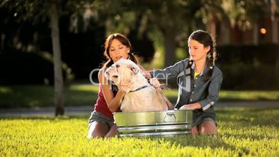 Mom & Daughter Bathing Family Bulldog
