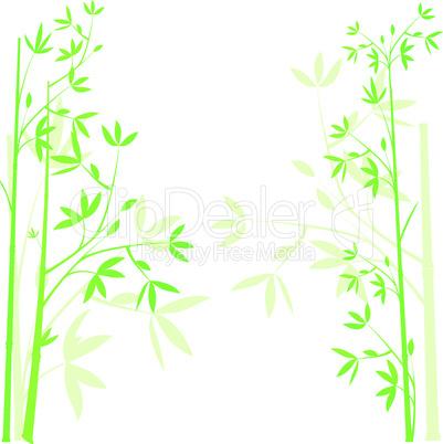 Green bamboo background, illustration