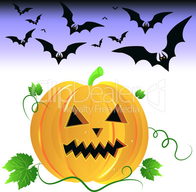 Halloween pumpkin and night bats